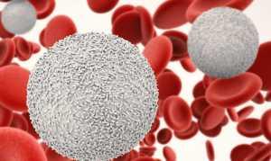 Как быстро поднять лейкоциты в крови после химиотерапии