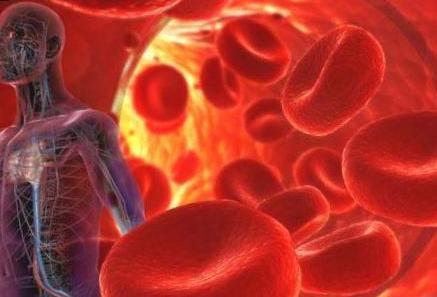 Анализы крови и их расшифровка при раке крови: показатели определяющие рак крови