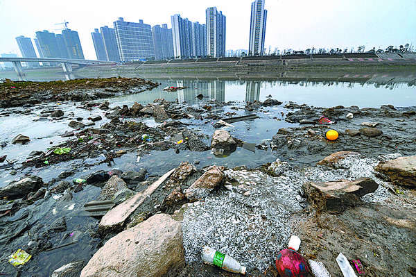 Загрязнённая среда обитания