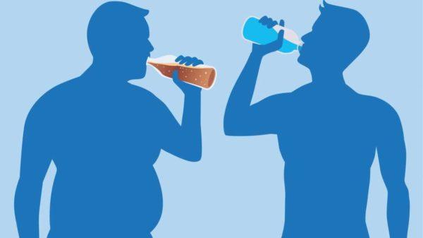 Вредные продукты вызывают ожирение